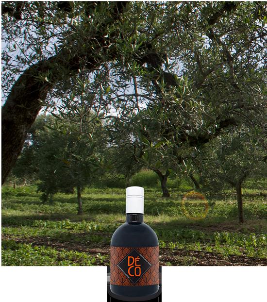 Bottiglia Piccola | Déco Bio